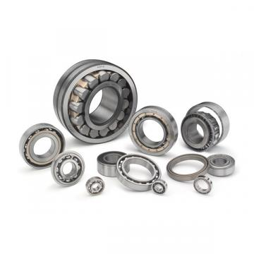 Double Seal Double-Row Full Complement Cylindrical Roller Bearing SL045020PP