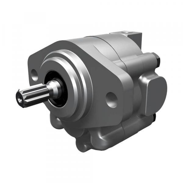 USA VICKERS Pump PVM074ER09ES02AAC07200000A0A #4 image